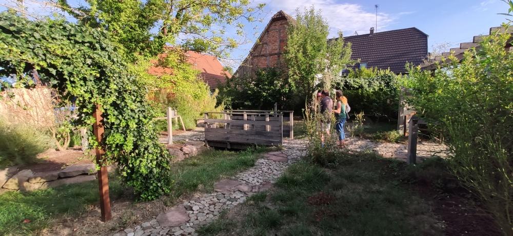 Le Ried au pas des villageois Muttersholtz