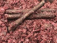1020 - Chou rouge à la cannelle Cassia